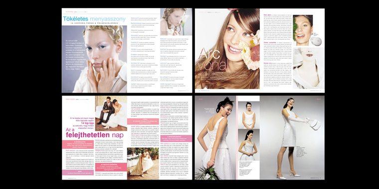 Publication-17